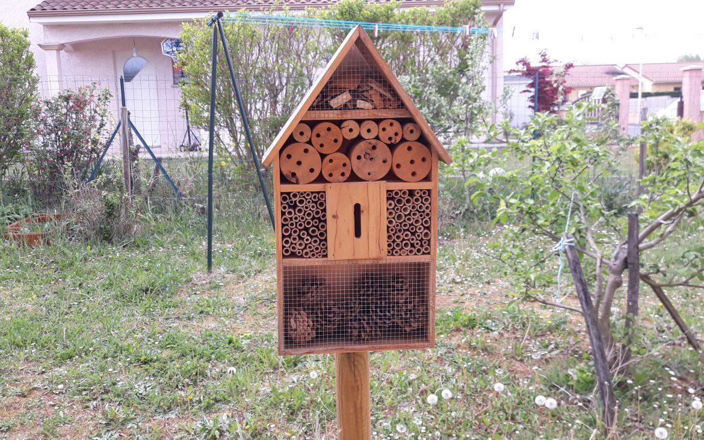 Maison à insectes : une solution pour protéger notre écosystème